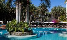 Blick auf den Pool und Palmenbepflanzung