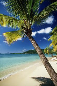perfekter Strand- und Meerblick