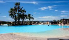 Pool mit Palmen und Liegemöglichkeiten