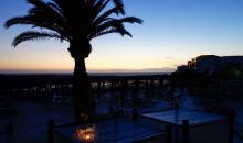 Sonnenuntergang über dem Meer mit Palme im Vordergrund