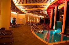 Wellness Bereich mit Pool