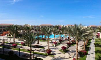 Blick auf den Pool mit Palmen