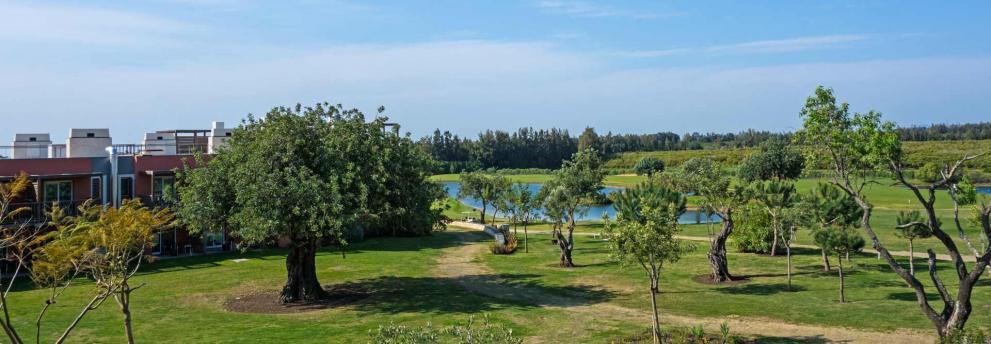 Quinta da Ria Clubdirektor