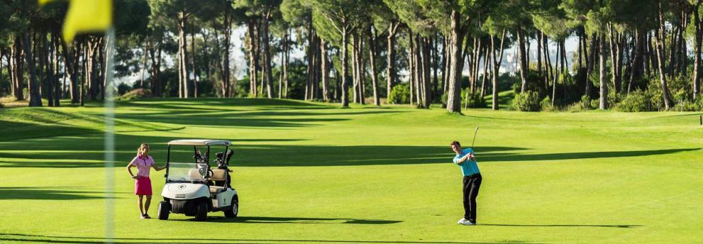 Golfer mit Cart auf Golfplatz