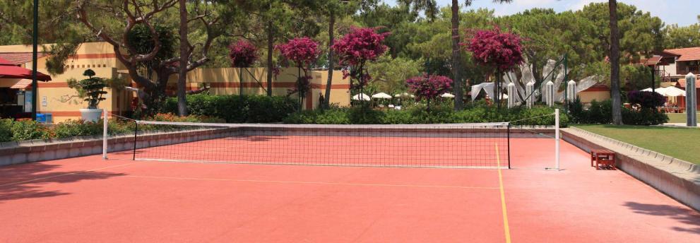 Tennis Camyuva