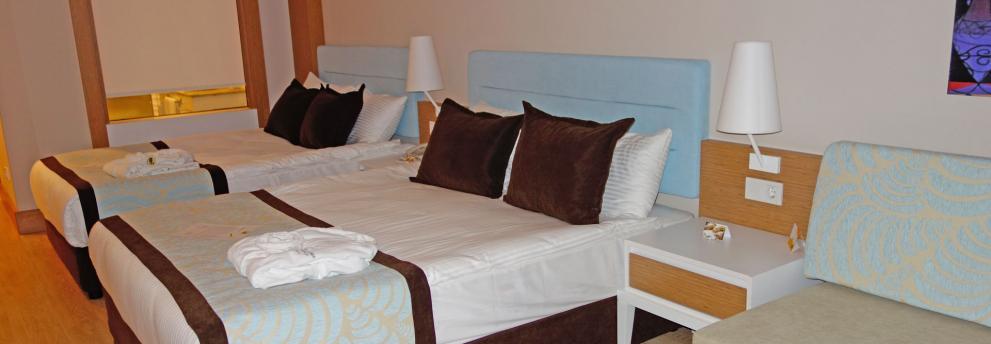 Zimmer Jacaranda