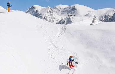 Ski/Alpinski