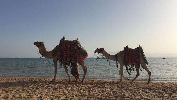 Kameleam Strand