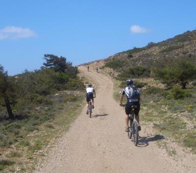 Unterwegs auf dem Trail
