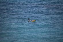 Segler auf dem Meer